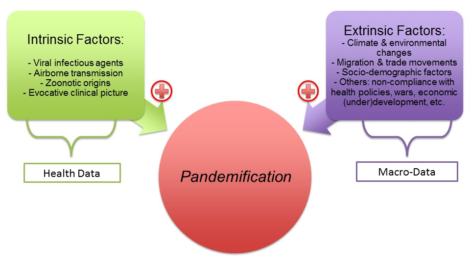 An overview of the pandemification process